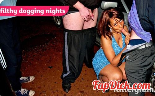 OnADoggingMission.com/Killergram.com - Daniella Dee - Filthy Dogging Nights [HD 720p]