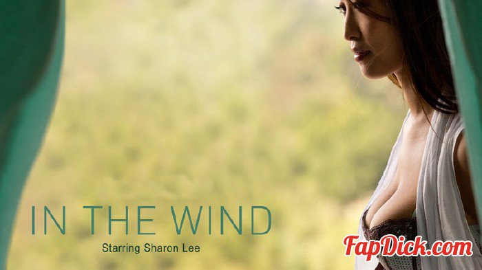 Babes.com - Sharon Lee - In The Wind [SD 480p]