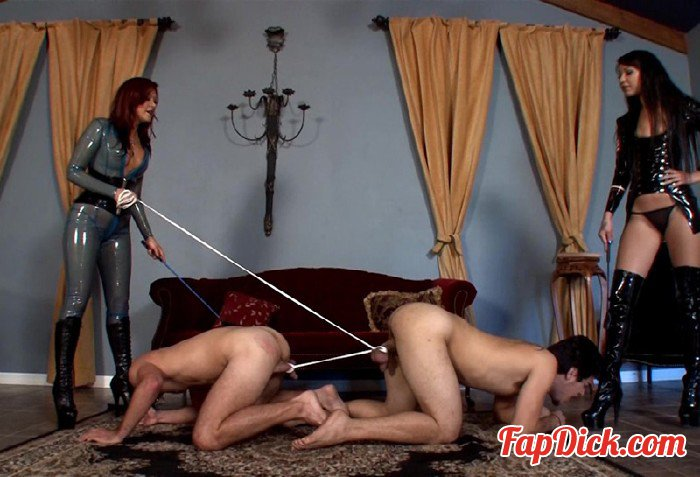 ClubDom.com - Goddess Deanna, Mistress Esmi - Ball Tug Of War [FullHD 1080p]